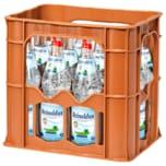 Reinoldus Mineralwasser Classic 12x0,7l