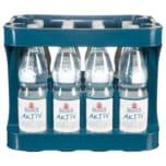 Basinus Mineralwasser Aktiv 12x1l