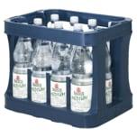 Basinus Mineralwasser Medium 12x1l