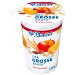 Bauer Joghurt Bircher Müsli 250g