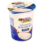 Hofgut Joghurt Vollmilch 200g