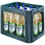 Margon Ginger Ale 12x1l