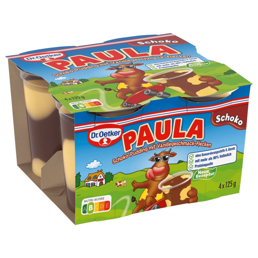 Dr. Oetker Paula Schokolade mit Vanille 4x125g