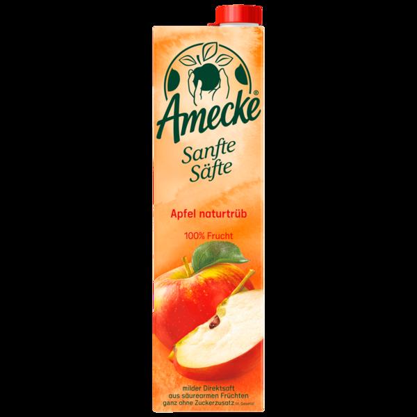 Amecke Sanfte Säfte Apfel naturtrüb 1l