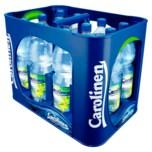 Carolinen Limette 12x1l