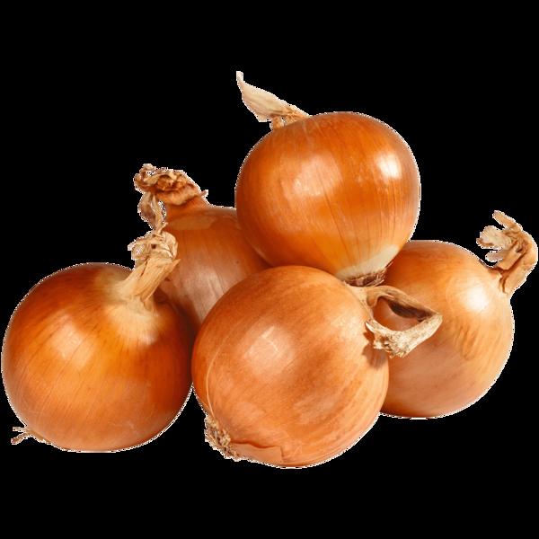 Erlenhof Gemüsezwiebeln