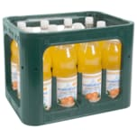 Nassauer Land Orangen-Limonade 12x1l