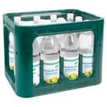 Nassauer Land Zitronen-Limonade 12x1l