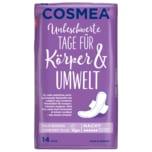 Cosmea Maxi Binden Comfort Plus Nacht 14 Stück