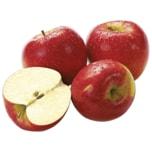 Apfel Pinova