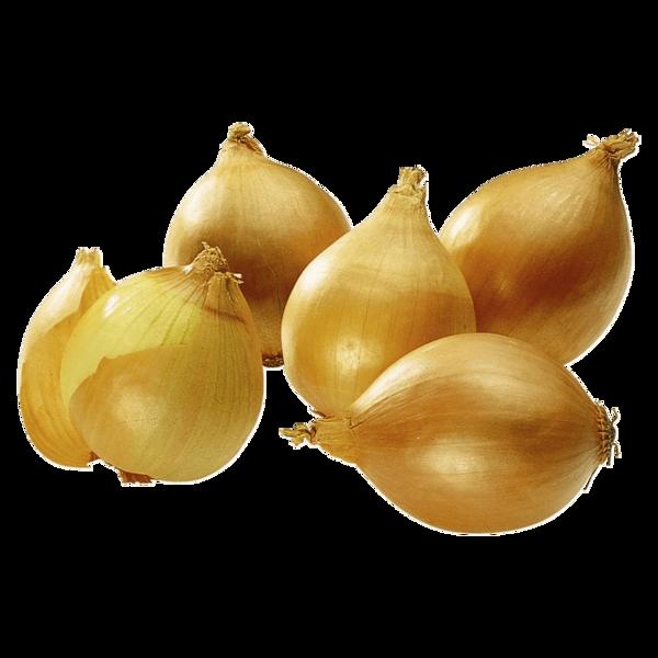 Zwiebeln gelb Bio