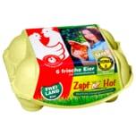 Zapf Hof Eier Freilandhaltung 6 Stück