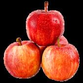 REWE Regional Tafeläpfel Gala rot 1,5kg