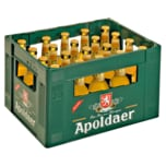 Apoldaer Wanderbursche 20x0,33 l