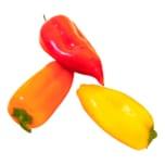 Bio Paprika Mix Mini