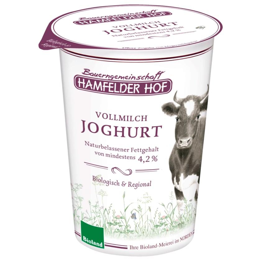 Hamfelder Hof Bio Joghurt natur 4,2% Fett 500g