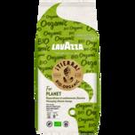 Lavazza Tierra Organic 1000g