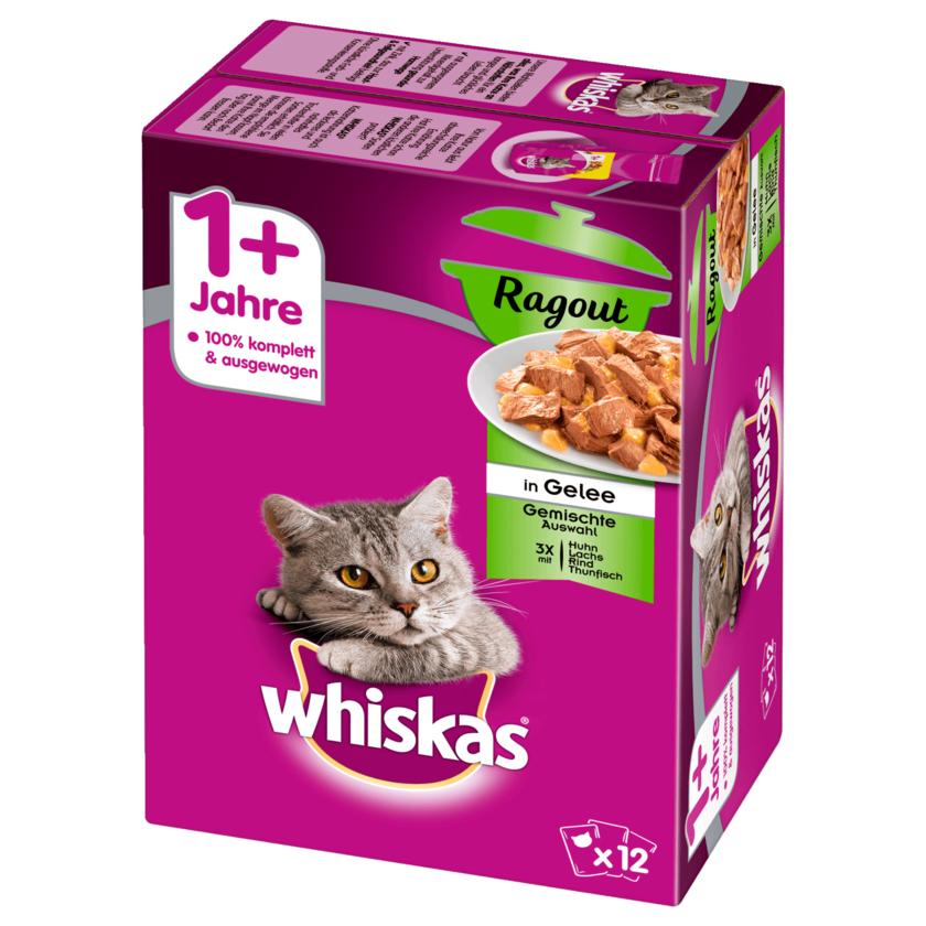Whiskas 1+ Ragout Gemischte Auswahl in Gelee 12x85g