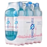 Spreequell 6x1,0 l PET EW Naturell