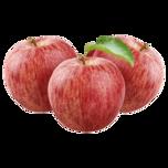 Apfel Snack Gala 980g