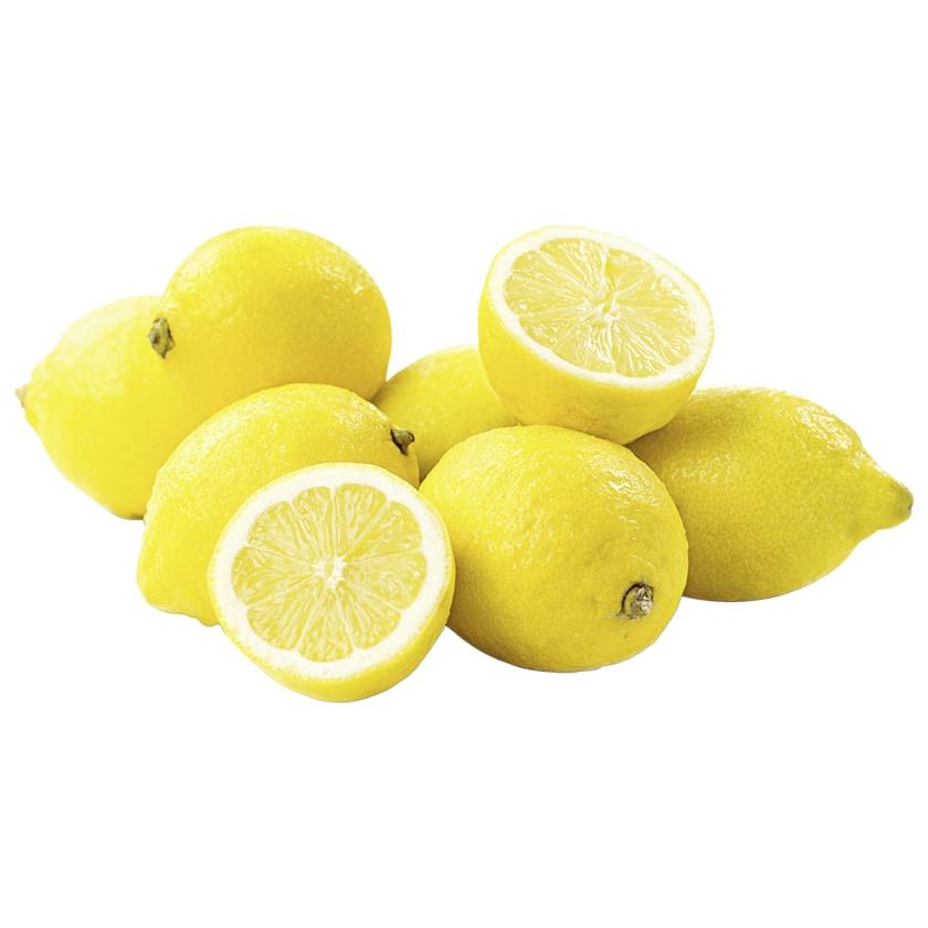 REWE Bio Zitrone 500g Netz