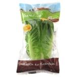 Salacrisp Salat 1 Stück