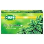 Herba Pfefferminze 30g, 20 Stück