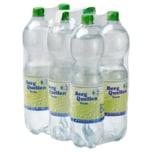 Berg Quellen Mineralwasser Sanft 6x1,5l