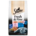 Sheba Fresh & Fine in Sauce mit Lachs und Thunfisch 6x50g