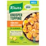 Knorr Gemüsekrönung Knusper Topping Frühlingskräuter & Käse 40g
