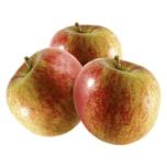 REWE Bio Apfel Caudle 1kg