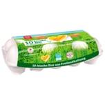 Rewe Beste Wahl Eier aus Freilandhaltung 10 Stück