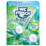 WC Frisch Kraft-Aktiv Minze Eukalyptus 50g