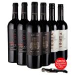 Weinset Rotwein Apulien Primitivo, 3er Set, 6x0,75l