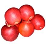 Apfel Rot 1Kg Schale