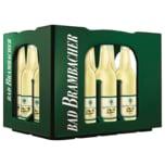 Bad Brambacher Garten-Limonade Zitrone 20x0,5l
