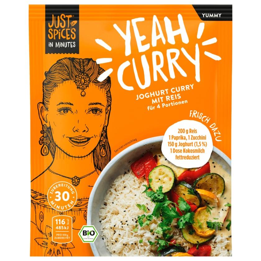 Just Spices In Minutes Bio Joghurt Curry mit Reis 35g