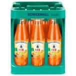 Römerwall Ace 12x0,75l
