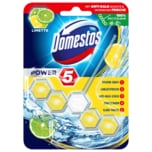 Domestos WC-Stein Power 5 Limette 55g