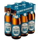 Gold Ochsen Ulmer Hell 6x0,5l
