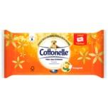 Cottonelle Mein Spa Erlebnis Feuchte Toilettentücher Orangenöl 44 Tücher