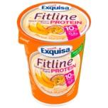 Exquisa Fitline Protein Pfirsich-Maracuja 400g