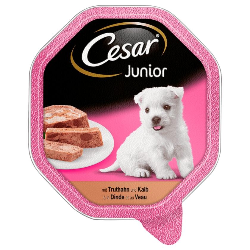 Cesar Junior mit Truthahn und Kalb 150g