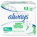 Always Cotton Protection Größe 1 Normal 12 Stück