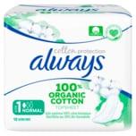 Always Cotton Protection Größe 1 Normal 12 Stück