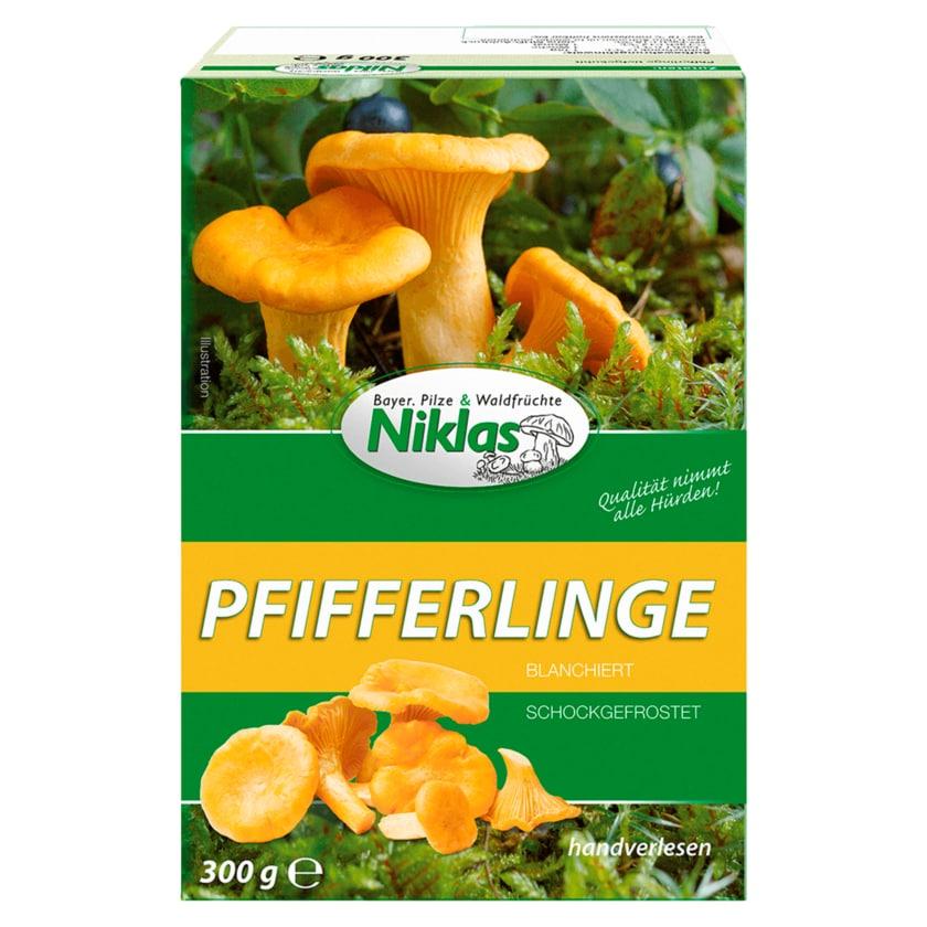 Niklas Pfifferlinge blanchiert schockgefrostet 300g