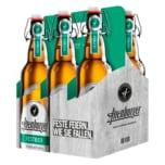 Altenburger Festbier 6x0,5l