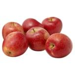 Demeter Bio Apfel Rot
