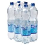 Berg Quellen Mineralwasser Classic 6x1,5l
